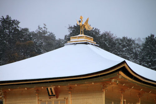 雪の金閣寺_e0048413_18282034.jpg