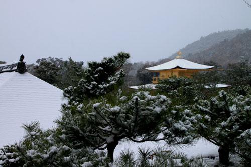 雪の金閣寺_e0048413_18284634.jpg