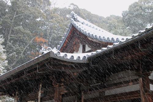 雪の金閣寺_e0048413_1828558.jpg
