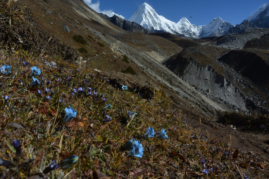 """2014年10月 『エヴェレスト・三峠越えトレッキング』 October 2014 \""""Three Pass Crossing in Everest\"""" _c0219616_2129268.jpg"""