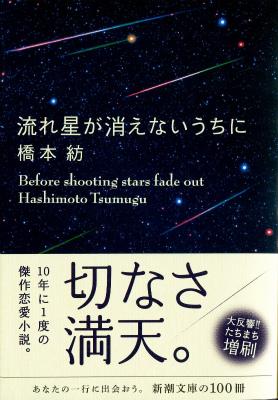 ✩ふたご座 流星群☆彡_a0253729_1333740.jpg