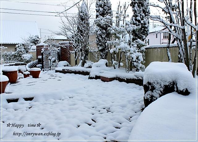 つくねで蓮根のはさみ焼き弁当と雪と♪_f0348032_17345307.jpg
