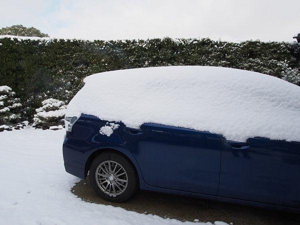 2014年12月18日 雪の朝_b0341140_16243794.jpg