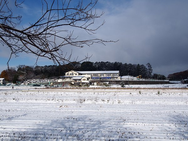 2014年12月18日 雪の朝_b0341140_1624564.jpg