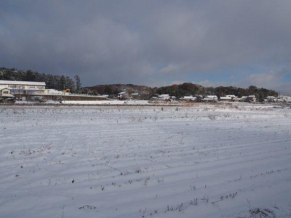2014年12月18日 雪の朝_b0341140_1625648.jpg