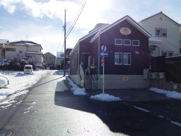 雪☆雪☆雪☆23㎝_d0256356_17105987.jpg