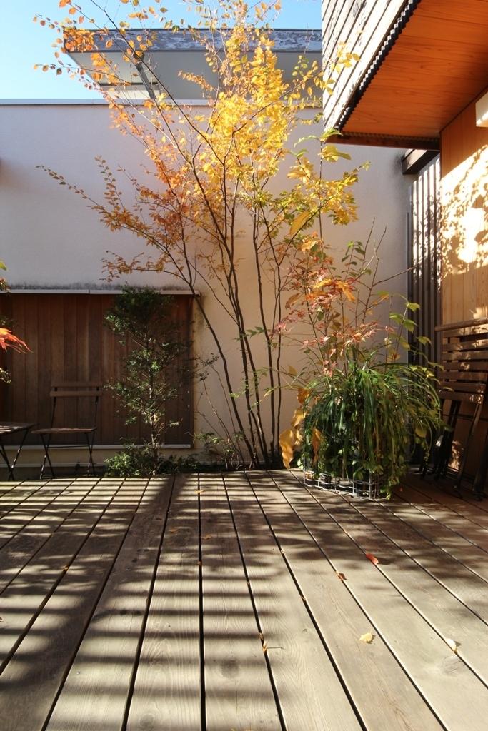 庭木の剪定_c0310571_08540092.jpg