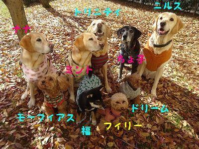 チーム富士宮と遊ぶ_e0222588_19304553.jpg