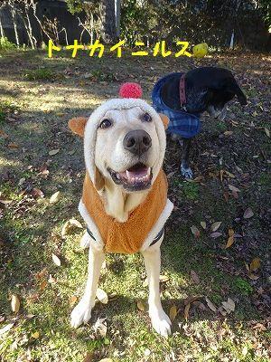 チーム富士宮と遊ぶ_e0222588_19305346.jpg