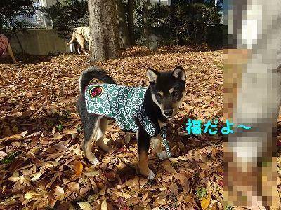 チーム富士宮と遊ぶ_e0222588_19310315.jpg