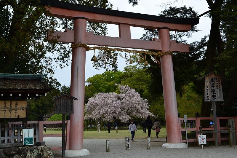 Iさんが見た景色1 -長崎・京都-_d0116009_10213296.jpg