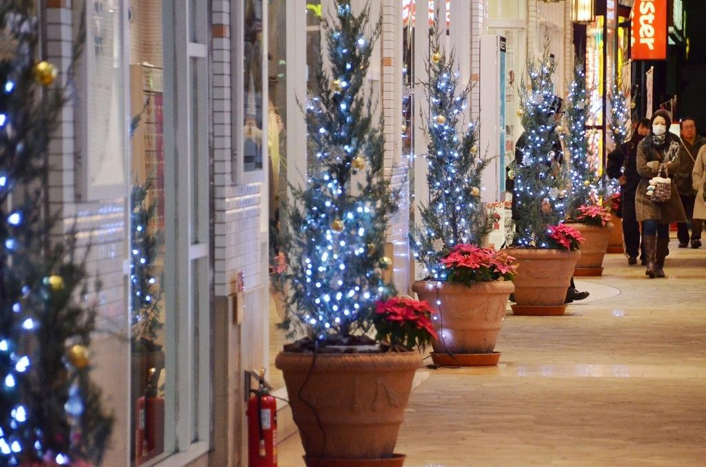 横須賀 クリスマス風景・・・だよ。_d0065116_23432414.jpg