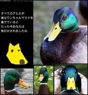 f0031417_1839253.jpg