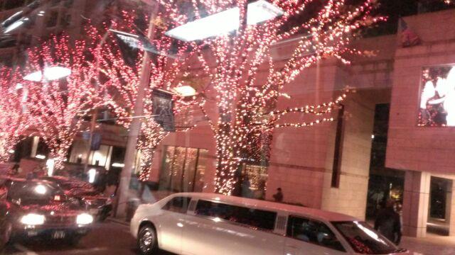 クリスマス商品30%OFF_f0166439_15544931.jpg