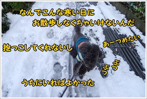 b0111376_12265539.jpg
