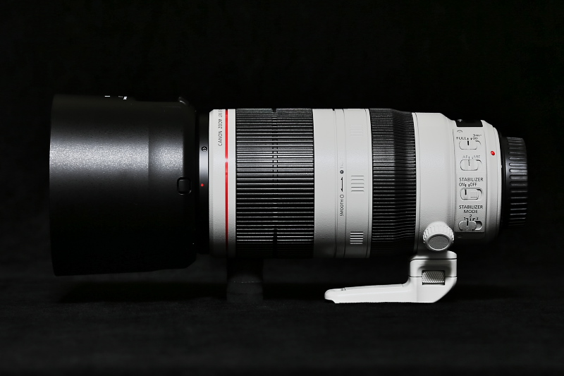 EF100-400mm F4.5-5.6L IS II USMがやってきました。_f0183785_23522053.jpg