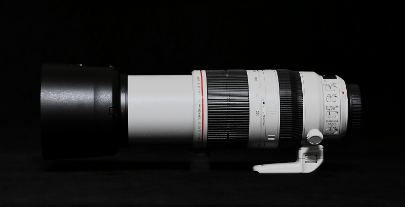EF100-400mm F4.5-5.6L IS II USMがやってきました。_f0183785_23523189.jpg