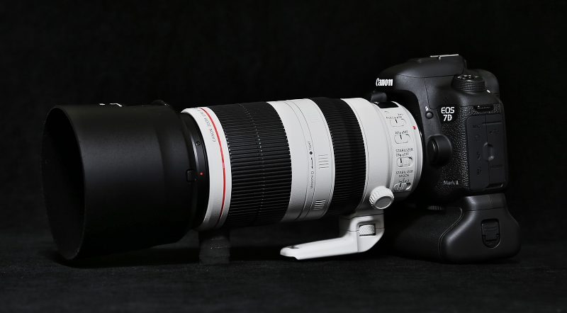 EF100-400mm F4.5-5.6L IS II USMがやってきました。_f0183785_23531545.jpg