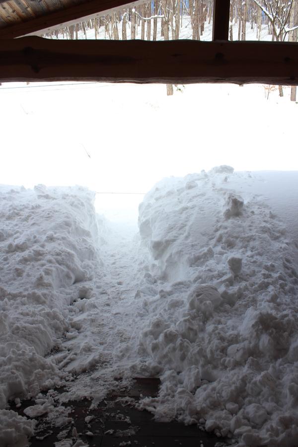 暴風雪のあとで_f0227395_13342944.jpg