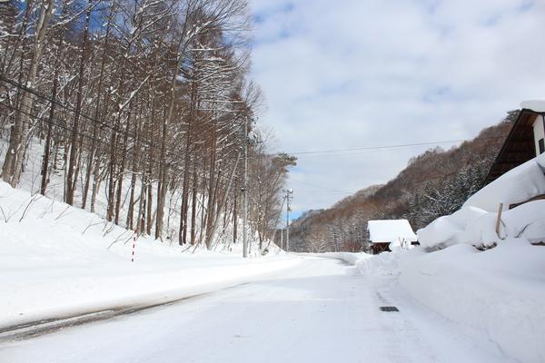 暴風雪のあとで_f0227395_13344026.jpg