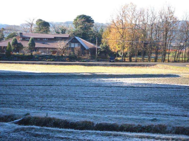 冬景色!!_a0208899_1494892.jpg