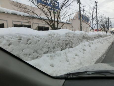 雪折れの梅など_a0203003_16123863.jpg