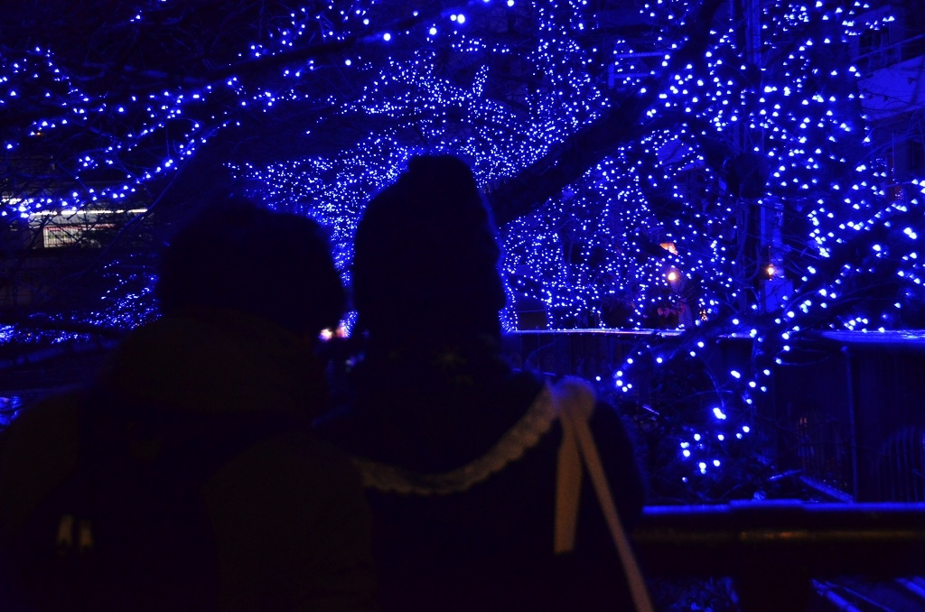 青の洞窟でメリークリスマス♪_d0065116_054971.jpg