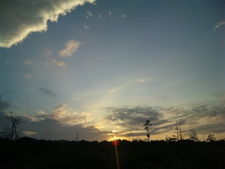 blog;千葉・東浪見カーニャのキューバ・ナイト_a0103940_13263512.jpg