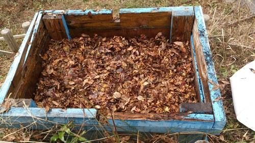 落ち葉堆肥 作ってみた_c0331145_22125310.jpg
