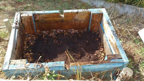 落ち葉堆肥 作ってみた_c0331145_228794.jpg