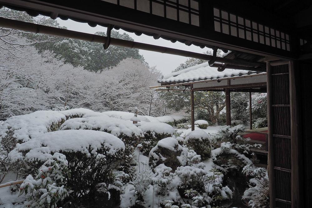 雪景色 京都 <詩仙堂>_f0021869_138839.jpg