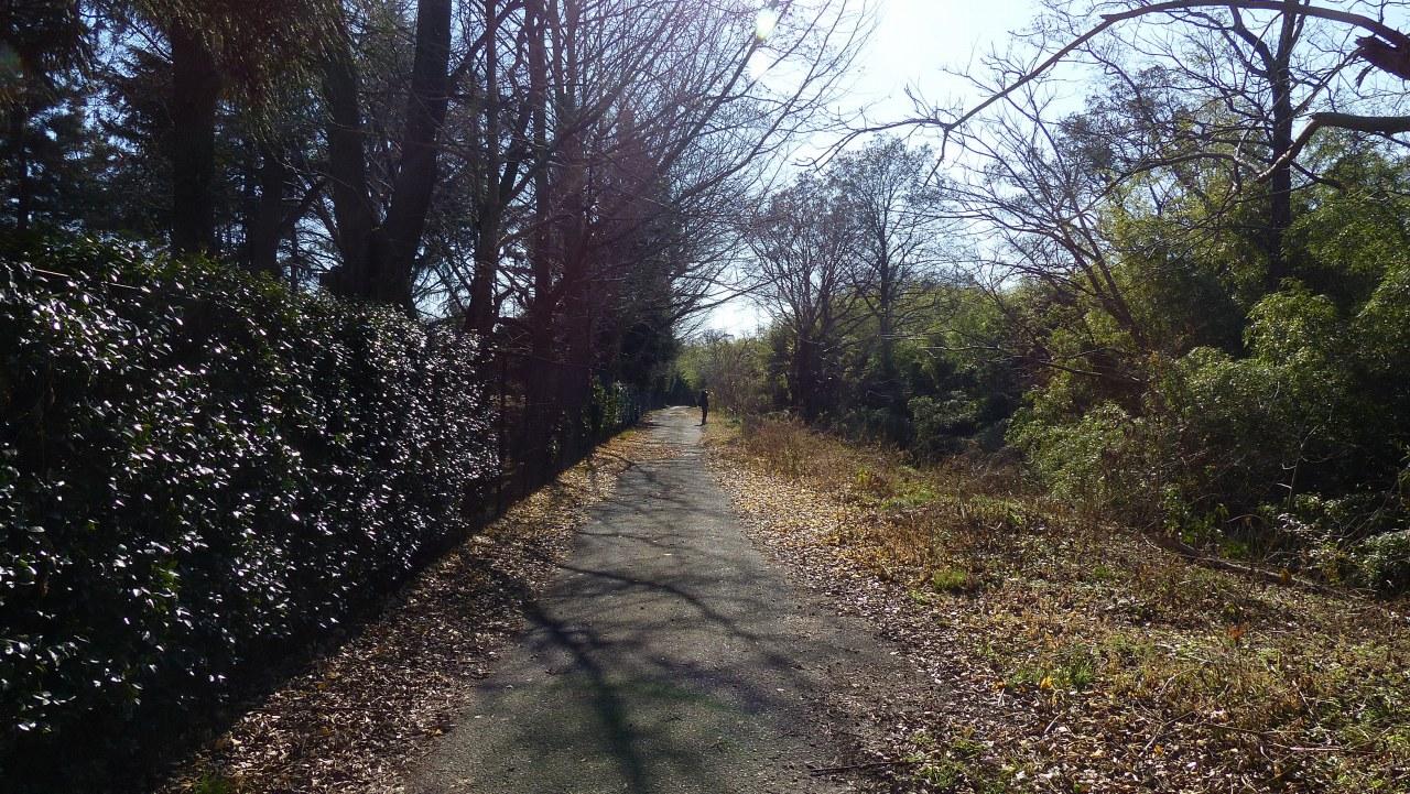 冬の散歩道_a0185081_19391259.jpg