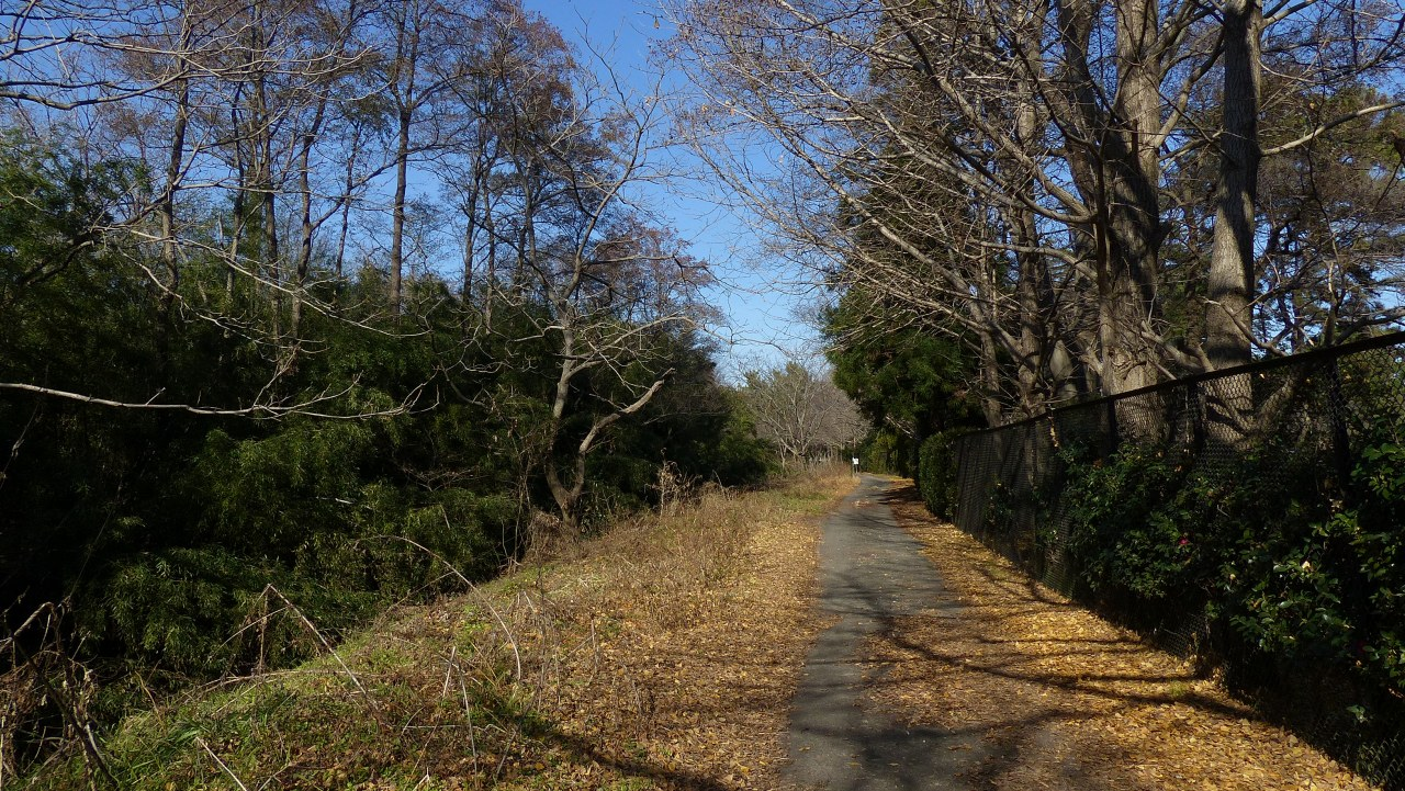 冬の散歩道_a0185081_19392357.jpg