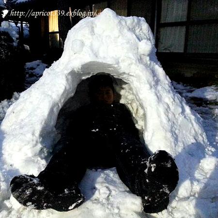 冬のリビングインテリア_c0293787_17415555.jpg