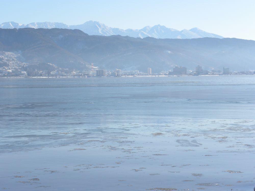 冬の風物詩・白鳥の飛来_b0329588_10154273.jpg