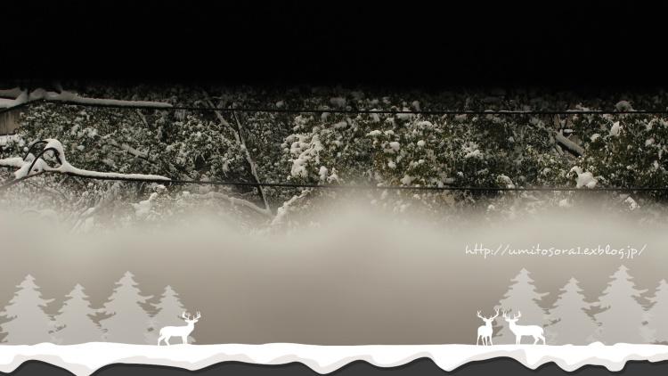 雪の日のベランダ♪_b0324291_15092568.jpg