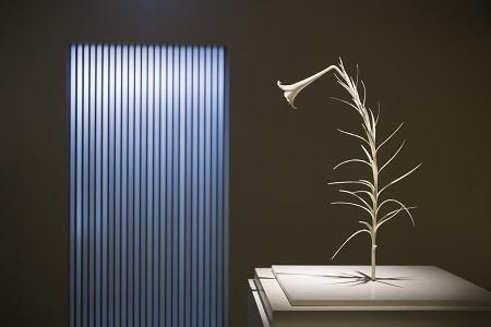 橋本雅也「一草一木」展 ~12月25日(木)まで_d0208992_14401454.jpg