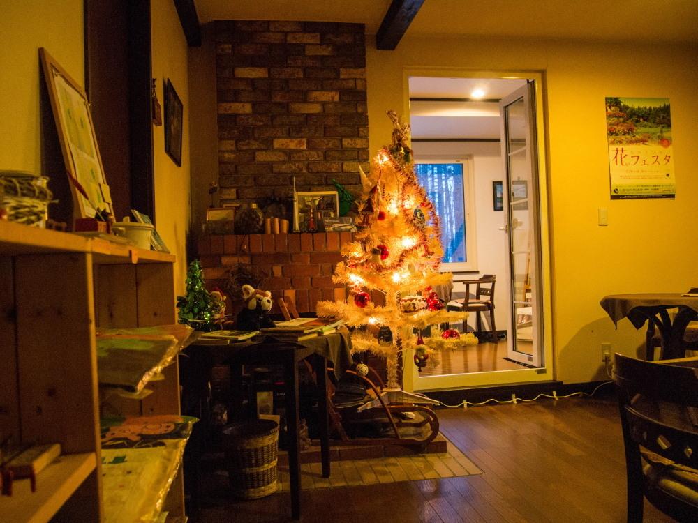 """今年もカンタベリーの""""白いクリスマスツリー""""が点灯しました。_f0276498_18442347.jpg"""