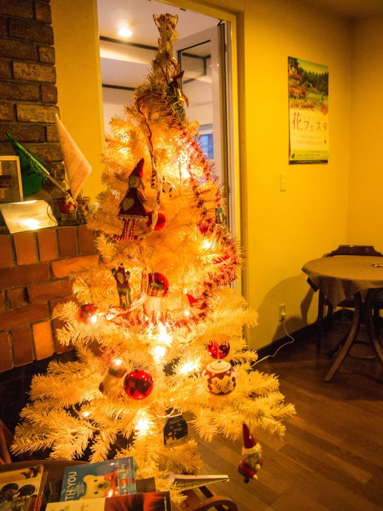 """今年もカンタベリーの""""白いクリスマスツリー""""が点灯しました。_f0276498_18444823.jpg"""
