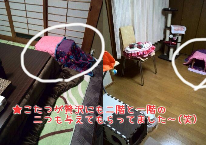 f0146804_16473631.jpg