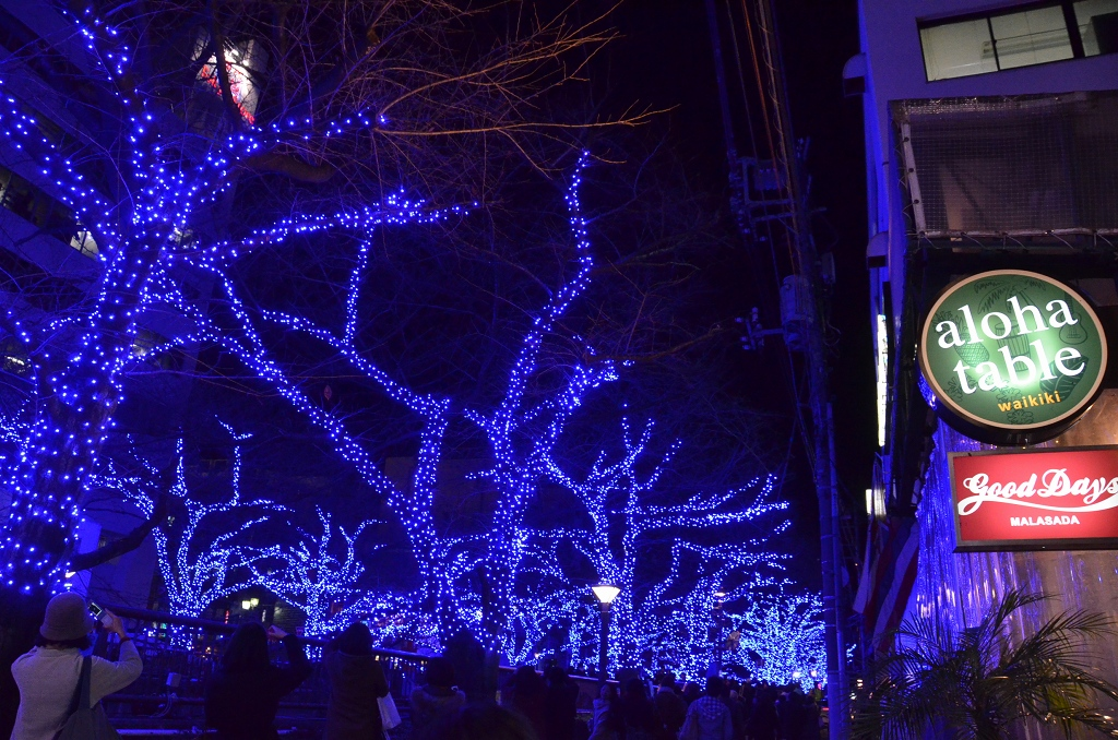 青の洞窟でメリークリスマス♪_d0065116_19554442.jpg