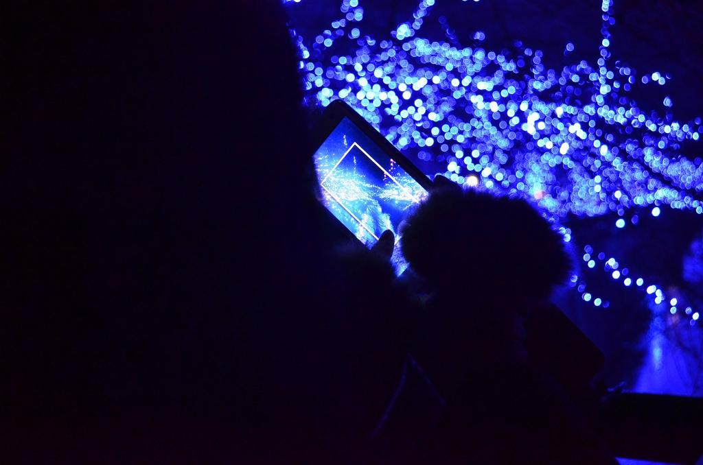 青の洞窟でメリークリスマス♪_d0065116_19565341.jpg