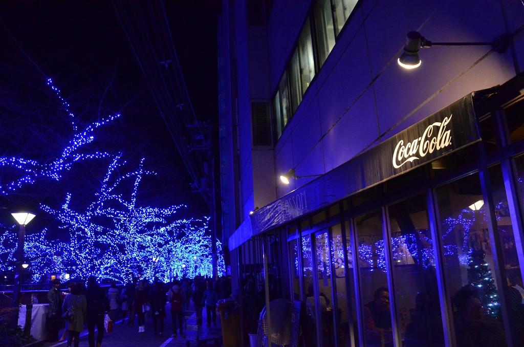 青の洞窟でメリークリスマス♪_d0065116_19593399.jpg
