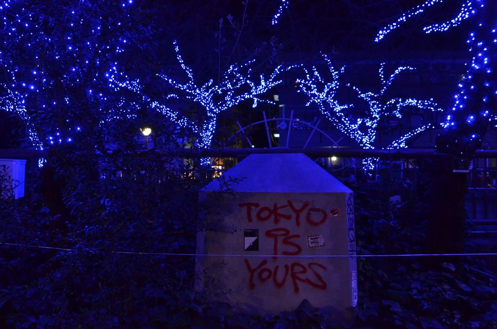 青の洞窟でメリークリスマス♪_d0065116_2001833.jpg