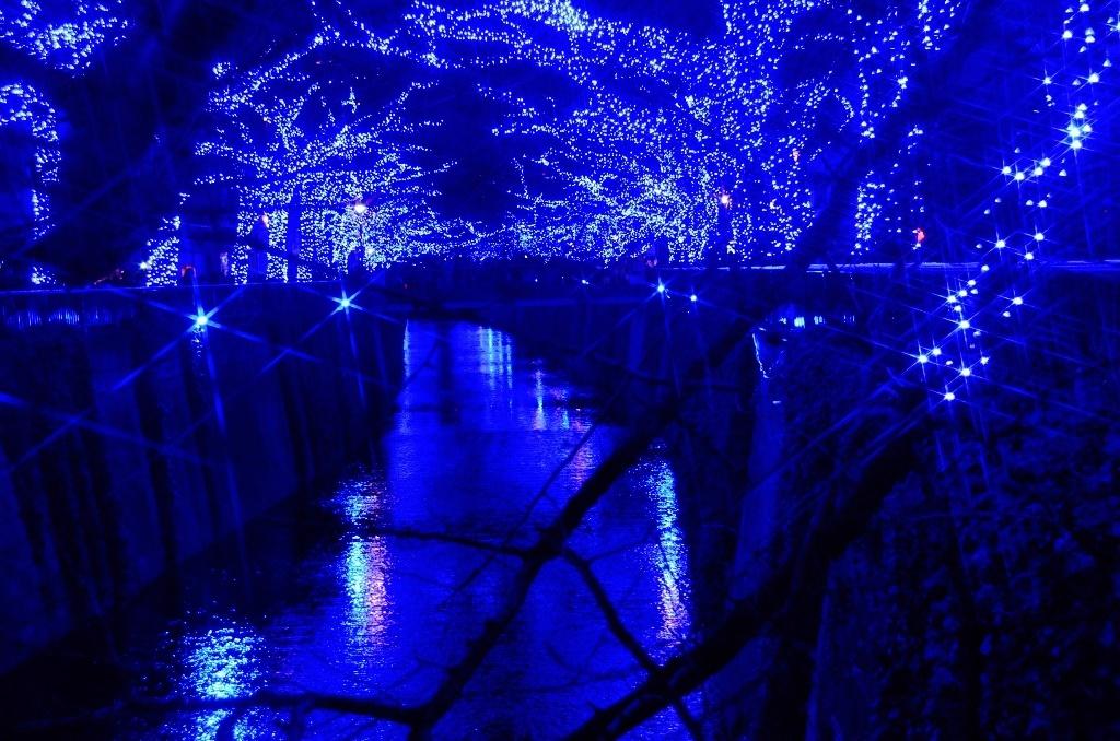 青の洞窟でメリークリスマス♪_d0065116_2011944.jpg