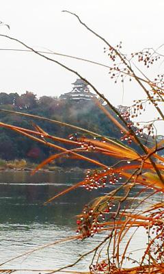 『国宝 犬山城』!_b0145843_144399.jpg