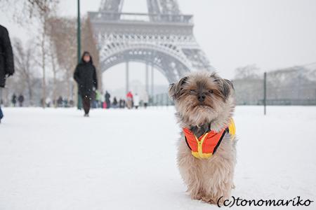 バブー家、再びパリへ_c0024345_0545245.jpg