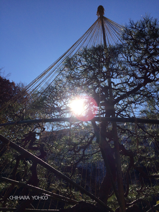 池田山公園_d0138811_15330530.jpg
