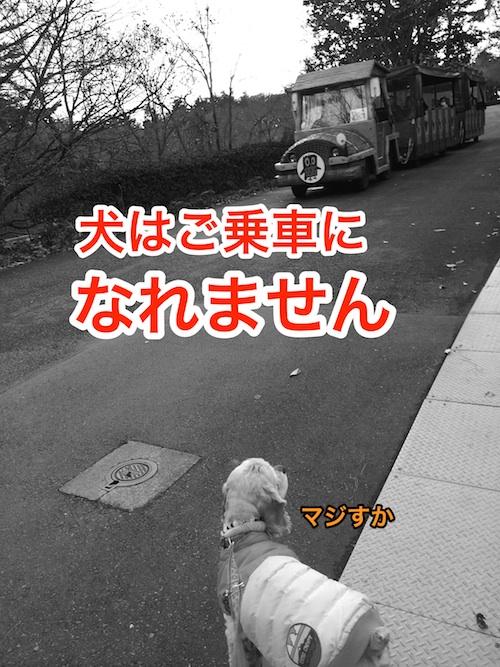 b0067012_125514.jpg
