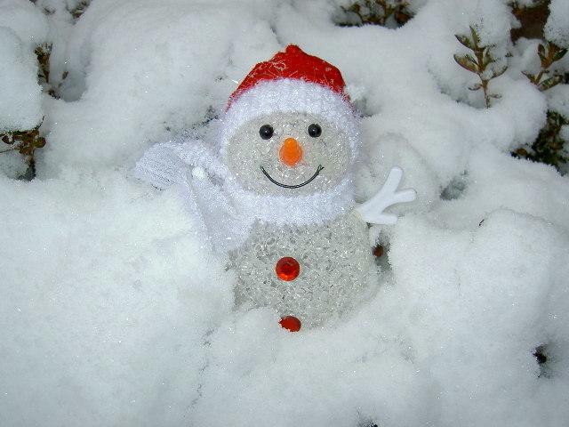 冬至                                       2014/12/22(月)_d0195024_15350005.jpg